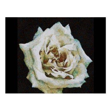 A Romantic White Wedding Rose PostInvitations