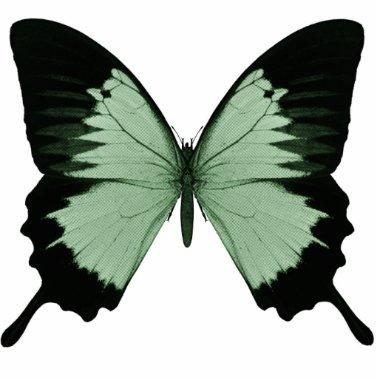 Big Green & Black Butterfly Cutout