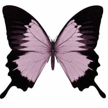 Big Pink & Black Butterfly - Personalize Statuette