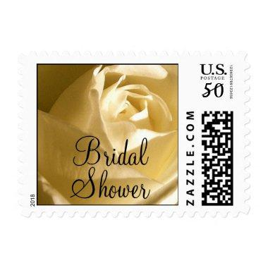 Postage Stamp Cream Rose