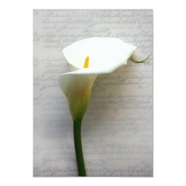 calla lily on old handwriting
