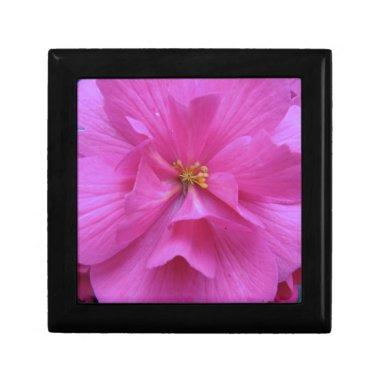 Close up of Pink Flower Gift Box