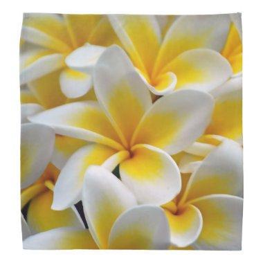 Frangipani flower bandana