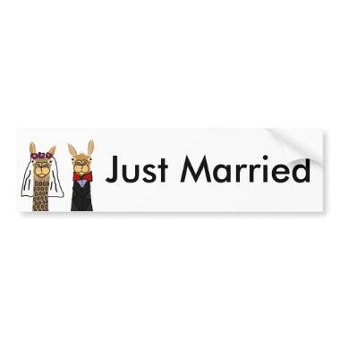 Funny Llama Bride and Groom Wedding Art Bumper Sticker