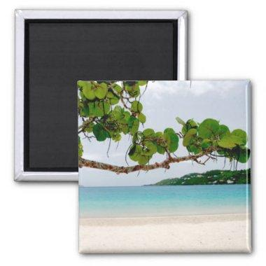 Magens Bay, St. Thomas 2 Inch Square Magnet