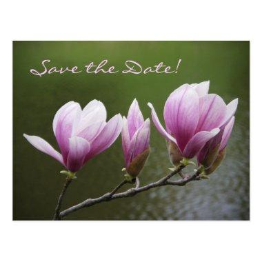 Magnolias, Save the Date! Post