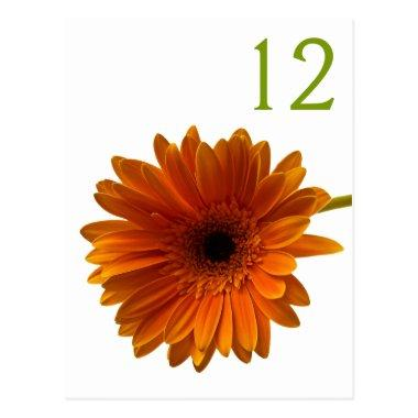 Orange Gerbera Daisy Table Number Card