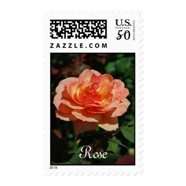 Personalized Peach Rose Stamp