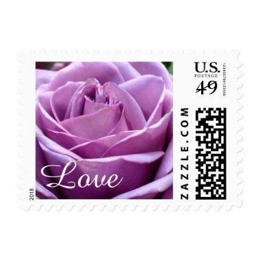 Purple Lavender Rose Flower Postage