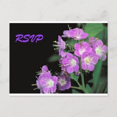 purple phacelia invitation post