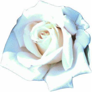 Single White Rose Statuette